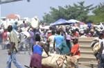 haiti 150x98 Haití vuelve a impedir entrada a productos RD