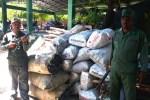 carbon 150x100 RD: Apresan haitianos y decomisan un lote e sacos de carbón