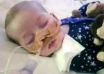 charlie gard 150x107 Padres deciden dejar morir a chichí británico