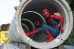 spider man 150x100 Dizque 'Spider Man' (Hombre cacata) saldrá en 5 películas de Marvel