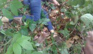 Fantino 300x175 Hallan cadáver de una joven en Fantino
