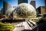 amazon 150x100 Amazon por soltar US$5,000 MM pa otra megasede