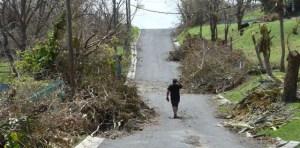 puerto rico 3 300x148 La reconstrucción de Puerto Rico