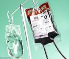 sangre 1 300x257 Muere recién nacida padres no querían hacerle transfusión de sangre