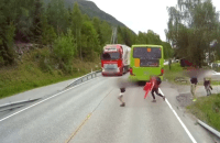 Noruega 200x130 Video: ¡Volvió a nacer!