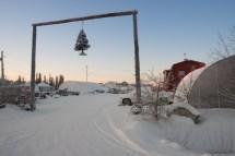 暖棚和温室,Yellowknife 当地的农庄