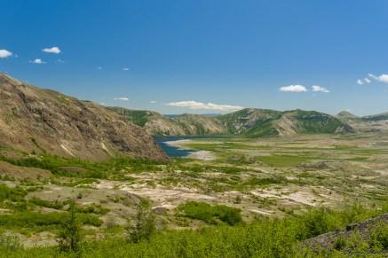 trail 某个部分就能看到隐藏在山后的 Spirit Lake 以及更远处的 Mt. Adams,有的人到了那里就返回了。