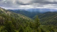 Iron Bear - Teenaway Ridge