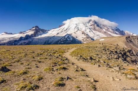 第一次比较困难的提升是离开 Frozen Lake 之后,然后 Rainier 就被挡住,而爬到 First Burroughs 之上非常的平整。