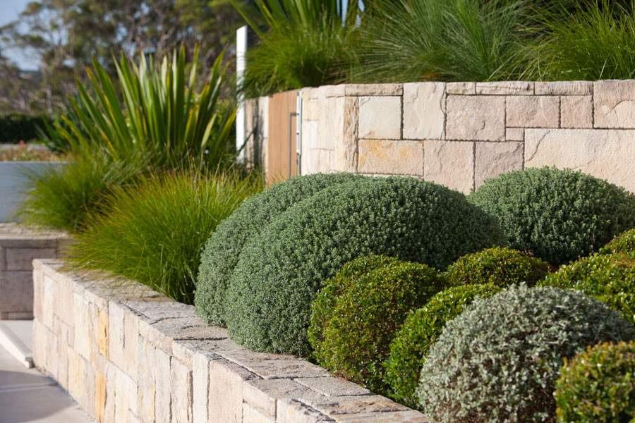 Piante Per Recinzioni Giardino.Cosa Fare Una Recinzione Per Un Aiuola Recinzioni E Barriere