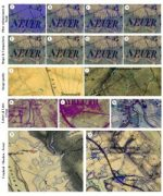 MSc handed in on object-oriented classification of historical maps for ecosystem services
