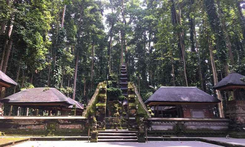Temple and trees view in Sangeh Monkey Forest, Bali