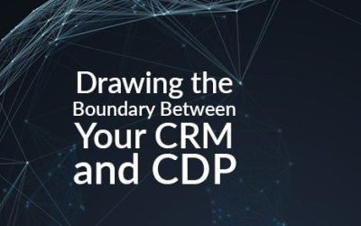 Drawing the Boundary Between Your CRM and CDP