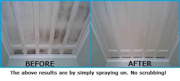Curtain Mold Remover Nz | www.cintronbeveragegroup.com