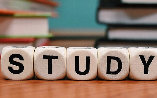 Dice spelling out the word study