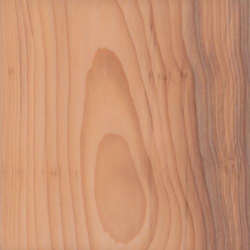 fatso lemn de ardere a lemnului