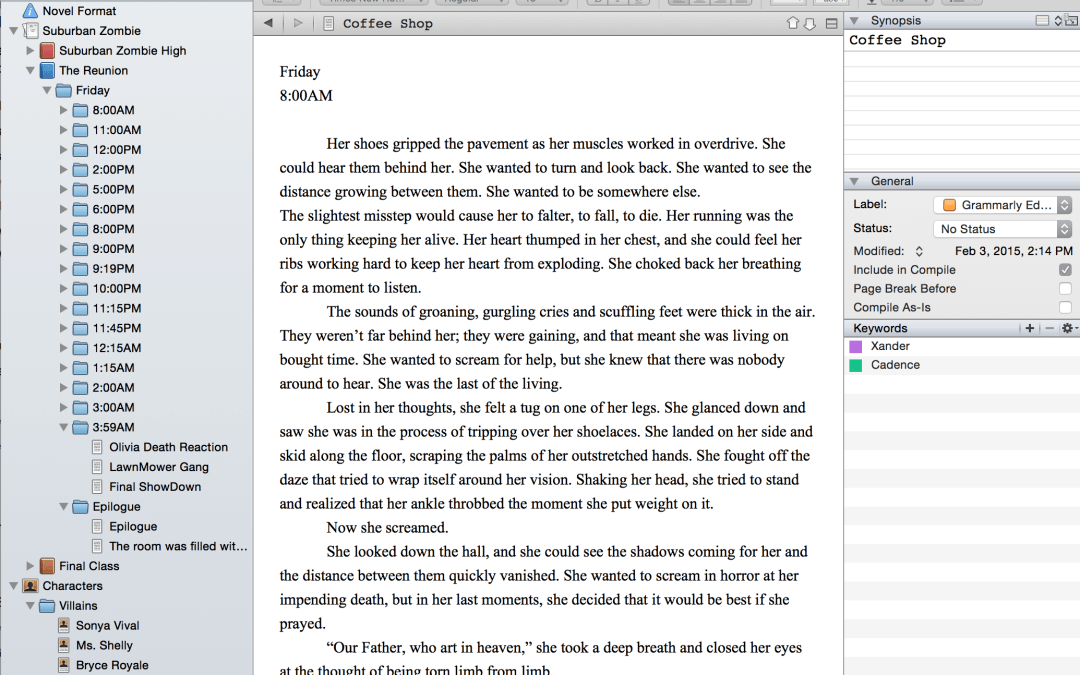 A Writer's Review: Writing Software