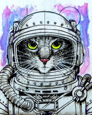 SpaceCat01