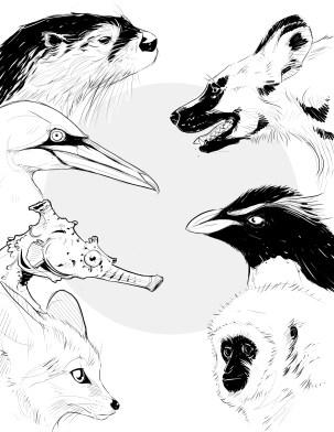 Illustration_sans_titre (18)