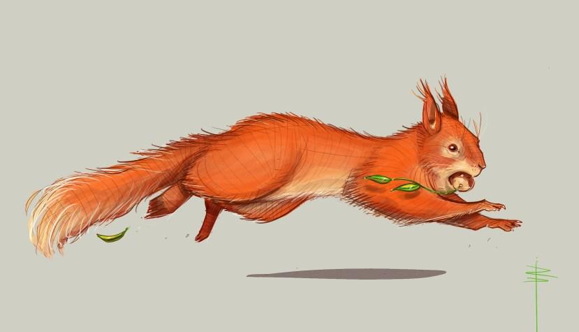 procreate-ecureuil