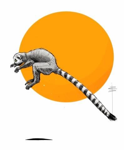 procreate-lemur