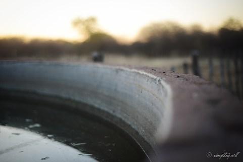 Reservoir wall. Outjo, Namibia.
