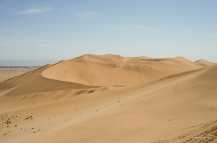 Dune 7, Dorob National Park, Namibia.
