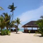 セブ島のおすすめ観光スポット!最高でした♪