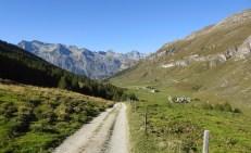 Etwas unterhalb Alp da Segl