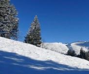 Bald ist die Chüebodenegg erreicht; und die Alpwirtschaft Tanzboden ist auch schon zu sehen.