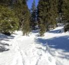 Bereich Vorder Bannwald, wo es steiler wurde