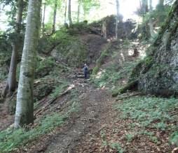 Im letzten Abstiegsabschnitt sind noch steilere (und feuchte) Stufen abzusteigen