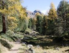 Auf dem Weg zum Lagh da Val Viola