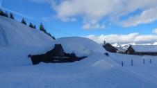Schnee in Hülle und Fülle