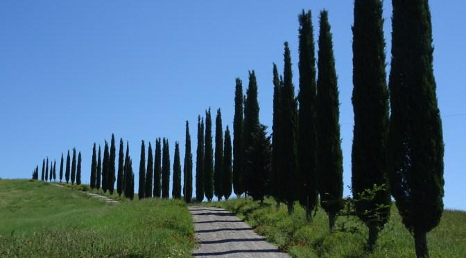 Monte Oliveto Maggiore – un giro in Creti Senesi