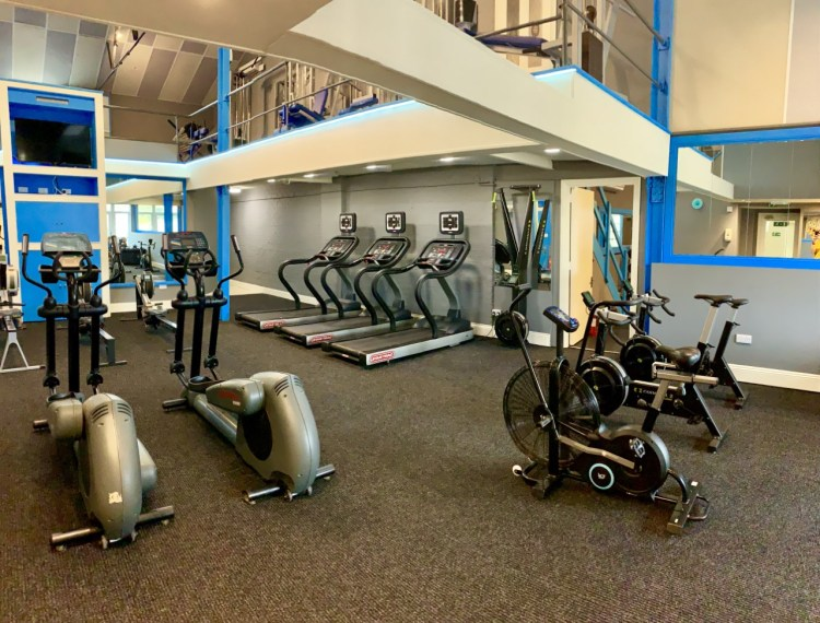 Ledbury gyms cardio room, with treadmills, skiergs, curve treadmills, rowers, assault bikes, rowing machines and cross trainers.