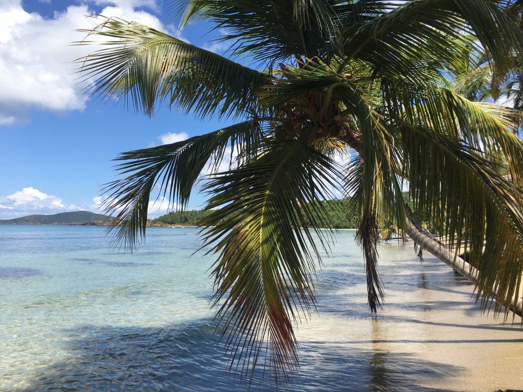 Beach Proposal St Thomas