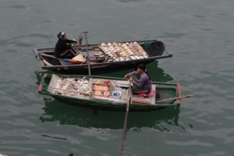 Pearl & Shell Sellers