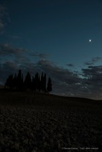 "Cypresses under the moon. Nikon D810, 38mm (24.0-120mm ƒ/4.0) 2"" ƒ/6.3 ISO 64"