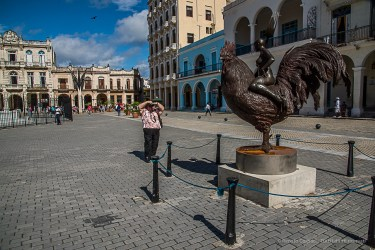 """The """"Rooster Rider"""", a sculpture of Roberto Fabelo surprises the tourists in Plaza Vieja. Nikon D810, 70 mm (24-120.0 ƒ/4) 1/100"""" ƒ/4 ISO 3200."""