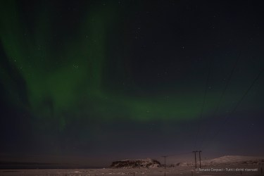 """Northern Light in a starry sky near Dyrhólaey. The name """"Aurora Borealis"""" was given after the Roman goddess of dawn, Aurora, and the Greek name for the north wind, Boreas, by Galileo in 1619. Nikon D810, 24 mm (24.0 ƒ/1.4) 6"""" ƒ/2.2 ISO 200"""