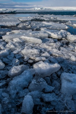 "The ice covering the Jökulsárlón lagoon cracks into smaller pieces that get carried out by the flood tide entering the lagoon. Nikon D810 24 mm (24.0 mm ƒ/1.4) 1/160"" ƒ/11 ISO 64"