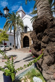 "Marbella, Andalusia. D810, 24 mm (24-120.0 mm ƒ/4) 1/200"" ƒ/8.0 ISO 64"