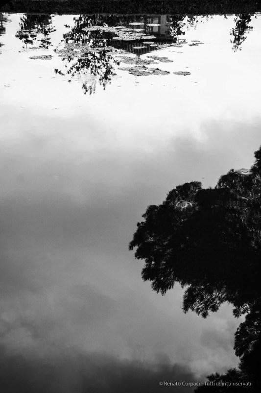 """Granada, Alhambra, April 2015. Nikon D300S, 45 mm (16-84 mm ƒ/3.5-5.6) 1/500"""" ƒ/5.6 ISO 400"""