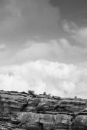 Torcal de Antequera, Andalucia April 2015 - Nikon D810, 85mm (85.0mm ƒ/1.4) 1/640 ƒ/4 ISO 64
