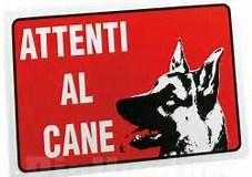attenti al cane 1