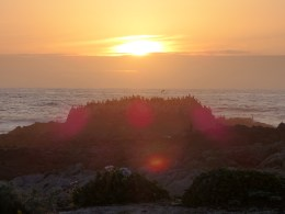 Sunset in Pacific Grove