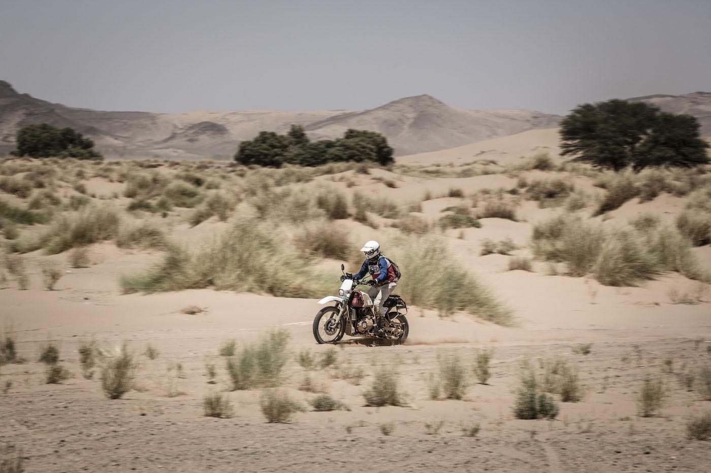 ROYAL ENFIELD HIMALAYAN 'RALLY 400' SCRAM AFRICA Grass Dunes
