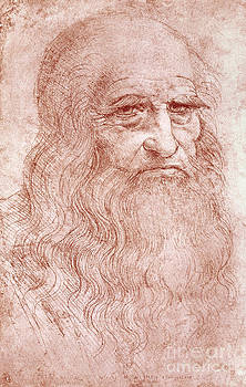 Leonardo da Vinci - Portrait of a Bearded Man