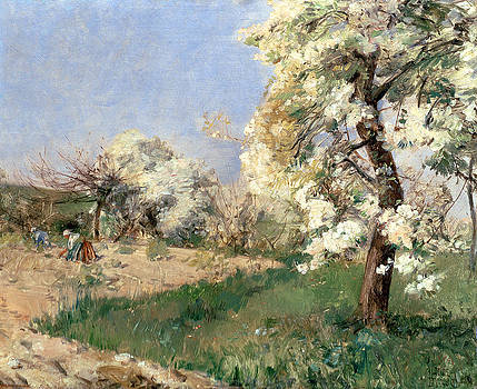 Childe Hassam - Pear Blossoms